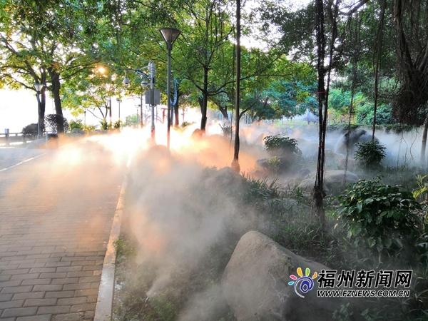 闽江公园林下空间提升改造完工 雾气缭绕仿若人间仙境