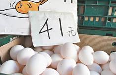 台湾鸡蛋每日短缺20万至40万枚 将进口460万枚救急