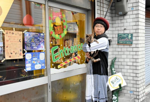 日本高知开设猫咪养老院 帮助高龄猫咪度过晚年