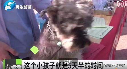 被狗舔了一下手,河南9岁男孩40天后突发狂犬病死亡!