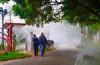 福州闽江公园:雾气缭绕打造梦幻仙境