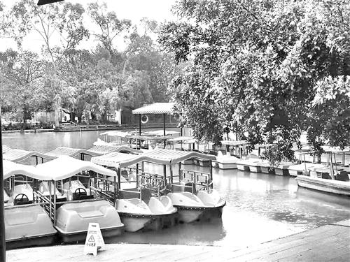 福州西湖公园推出万张免费游船票