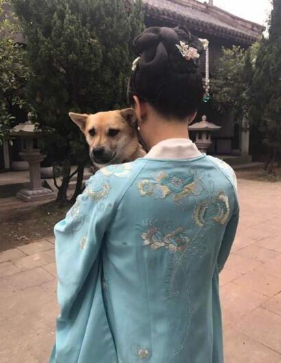 陈乔恩为爱狗庆生 怀抱爱狗尽显宠溺
