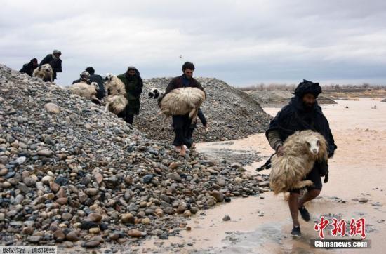 阿富汗暴雨成灾:约60人死亡 学校等基础设施受损
