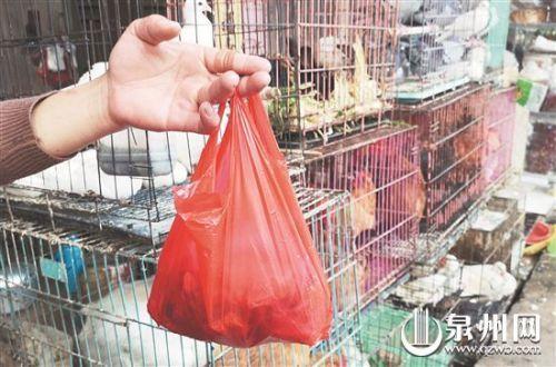 """""""限塑""""11年:塑料袋依舊盛行免費提供仍不少"""