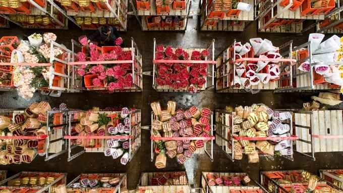七成女性自购鲜花怎么回事?三八妇女节为什么越来越多女性自购鲜花
