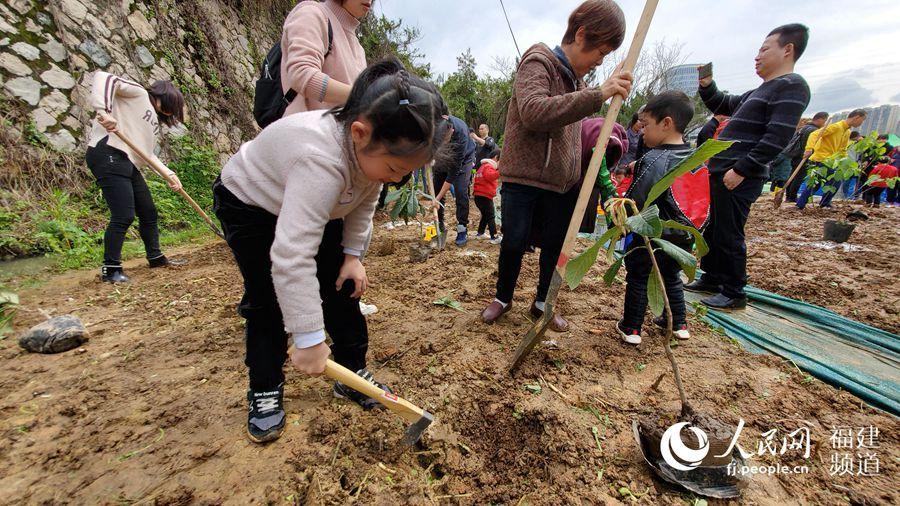 福州市儿童公园内童心植绿 共建生态榕城