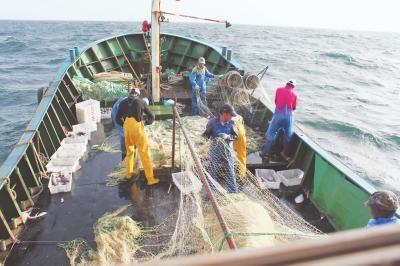 """宏东渔业:乘风""""海丝"""",书写远洋传奇"""