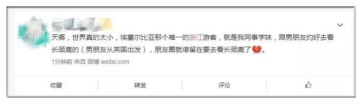 埃航遇难浙江女大学生是谁 去埃塞尔比亚看长颈鹿