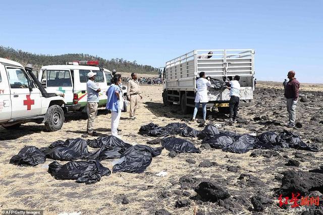 埃航遇难中国乘客身份公布 埃航坠机现场图 坠机原因是什么