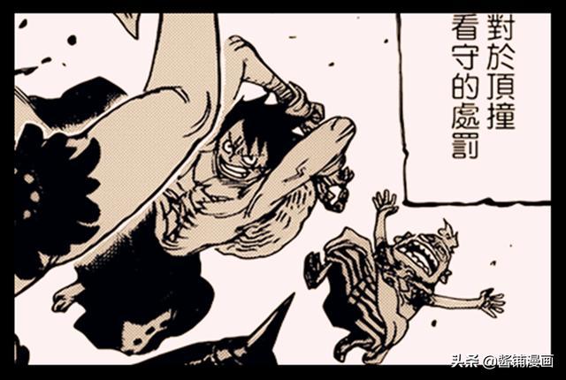 海贼王936话预测:豹五郎可能是特殊体质的人,吃饱饭后会变强者
