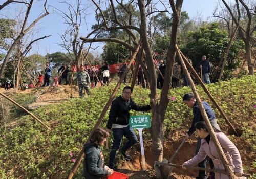 福州鼓楼区600多位干部群众在福山郊野公园开展植树造林活动