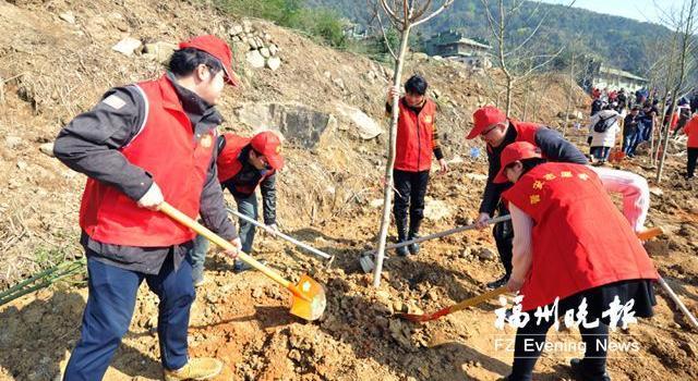 福州晋安区新种2000多株赏叶观花树 守护水土美化山景