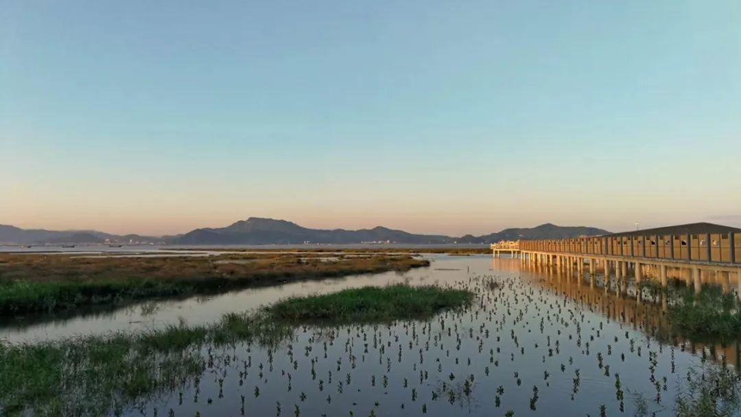 福州,一个淹没在花海里的城市!美哭了~(3)