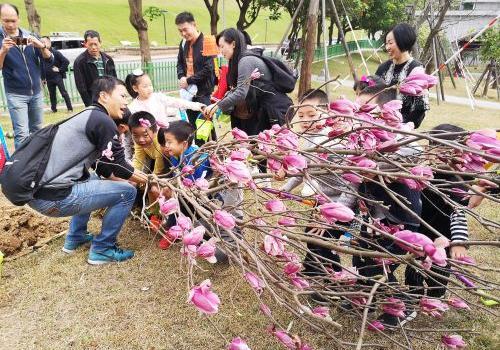 金鸡讲堂150个亲子家庭 打造福州首个粉色梯田