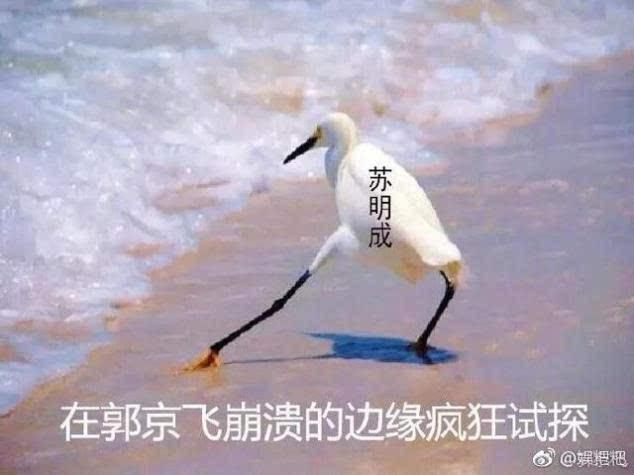 郭京飞被苏明成搞得掉粉是什么梗 郭京飞对苏明成的不满溢出屏幕