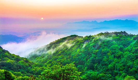 """国际森林日 看金沙国际娱乐网址最""""绿""""省份的最美森林"""