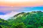 """国际森林日 看中国最""""绿""""省份的最美森林"""