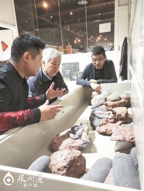 泉企投资建设博物馆方兴未艾 传播知识与美好事物