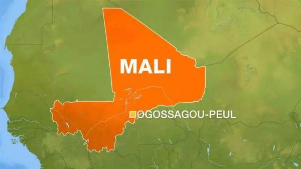 馬里村莊遭襲最新消息已致134人喪生 馬里村莊遭襲原因是什么