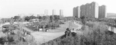 福建龍海:走發展新路,念綠色好經