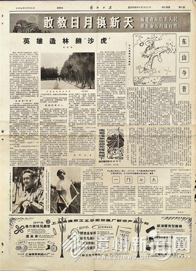 55年前报纸披露东山岛造林焕新颜