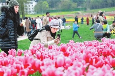 [南昌160路公交车路线]南昌160多项乡村休闲旅游活动等你来 持续至5月10日