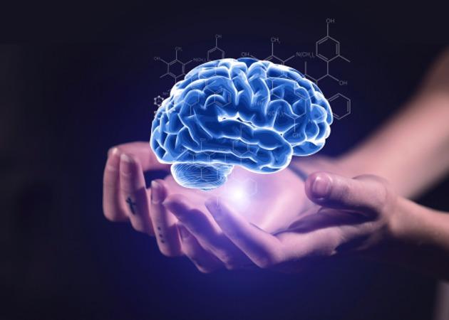 大脑到30岁才成熟是怎么回事 大脑30岁成熟有什么依据