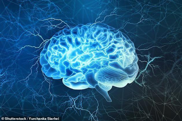 大脑到30岁才成熟怎么回事 大脑到30岁才成熟有什么科学依据