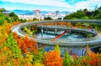 福州城市生态休闲绿道成果斐然