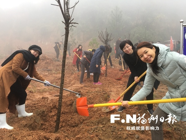 本月福州全市村庄种树38万棵