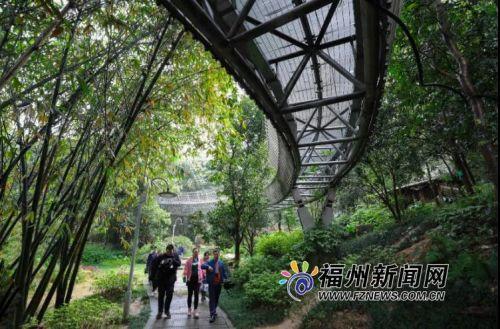 《人民日报》这样夸赞福州绿道:道在林间走 人在画中游!