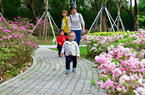 福州:杜鹃花开红似锦 万紫千红踏春来