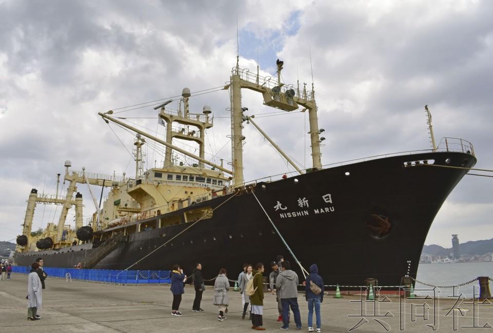 日本从南到北多少公里|日本从南极捕回333头鲸鱼是怎么回事 日本还在大规模捕鲸吗