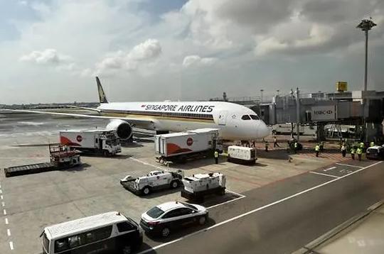 新加坡航空停飞怎么回事?新加坡哪一部飞机停飞有何影响