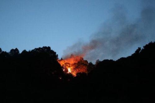 西昌市降半旗志哀始末详情 凉山火灾起火原因30名消防员为何会牺牲