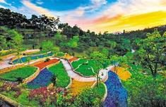 """福州打造具有山水城市特色的""""绿岛链""""——推窗见绿 出门进园"""