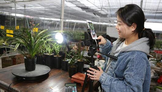 """福建:农特产品搭上""""直播快车"""""""