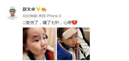 赵文卓女儿受伤新闻介绍?赵文卓女儿为什么受伤怎么受伤的详情
