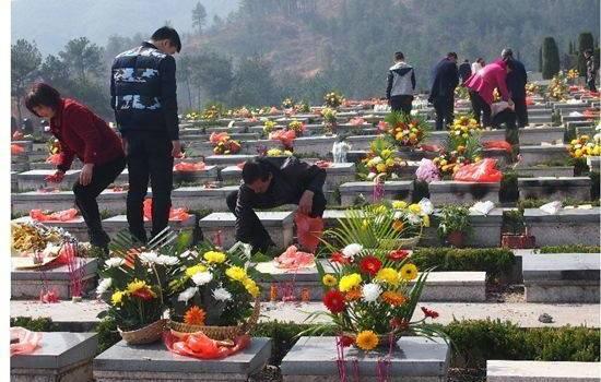 公墓祭祀鲜花被盗怎么回事 公墓祭祀鲜花被盗竟在墓园外售卖