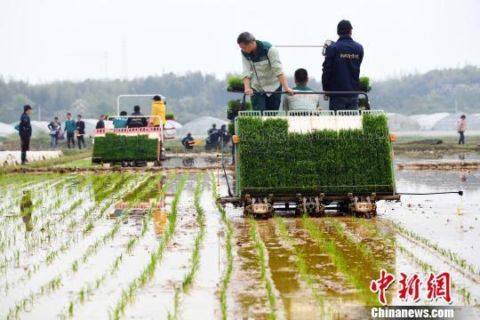 两部门:严厉打击违规骗套农机购置补贴行为