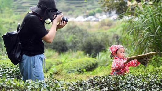 """武夷山举行""""喊山祭茶""""活动 游客体验采茶游"""