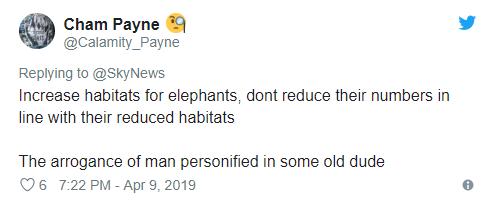 惊呆了!男子杀5000头大象具体什么情况 为什么要杀这么多大象
