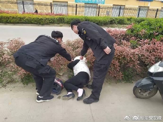 群众报警称草丛中发现熊猫|群众报警称草丛中发现熊猫怎么回事?草丛中为什么有熊猫真相太搞笑