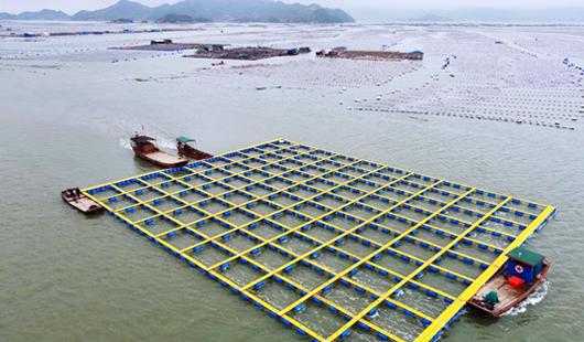 福建霞浦:加快海上养殖综合整治