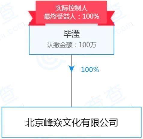 惊呆了!毕滢100%持股张丹峰工作室怎么回事?洪欣人财两空?