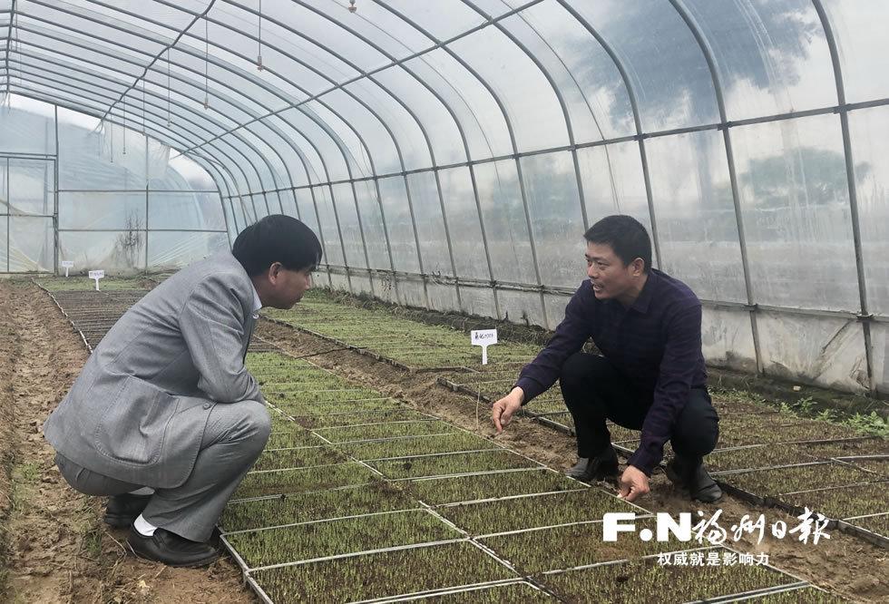 福清:科技特派员入村来兴农