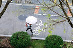 福建进入汛期 福州连日多雨 市民雨中出行