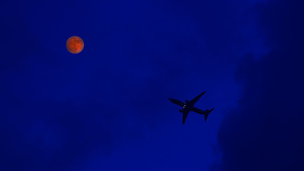 抖音今晚月色真美是什么梗?今晚月色真美下一句是什么?