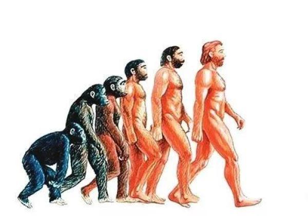 菲律宾发现新人类物种:身高不足1.2米,疑似人类近亲